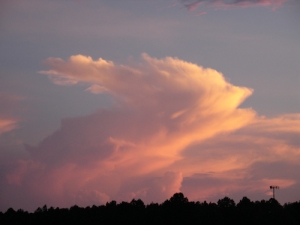 Photo by G. Romlewski; tall pink cloud