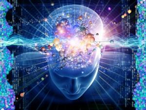 Brain-information