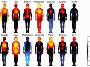 thermal emotions