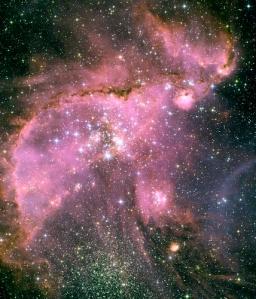 NGC 346 (Pink Elephant Nebula!)