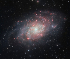 M33 - Traingulum Galaxy  from  hubblesite.org