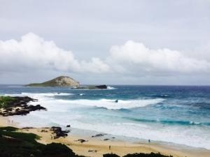 Hawaiian Vista |Clear View