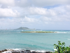 Hawaiian Vista |Distant View