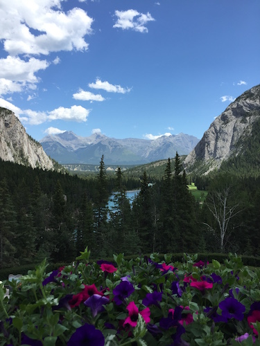 MountainBeautywp