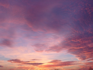 SkyPinks.wp